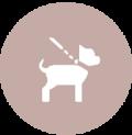 icono1-mascotas